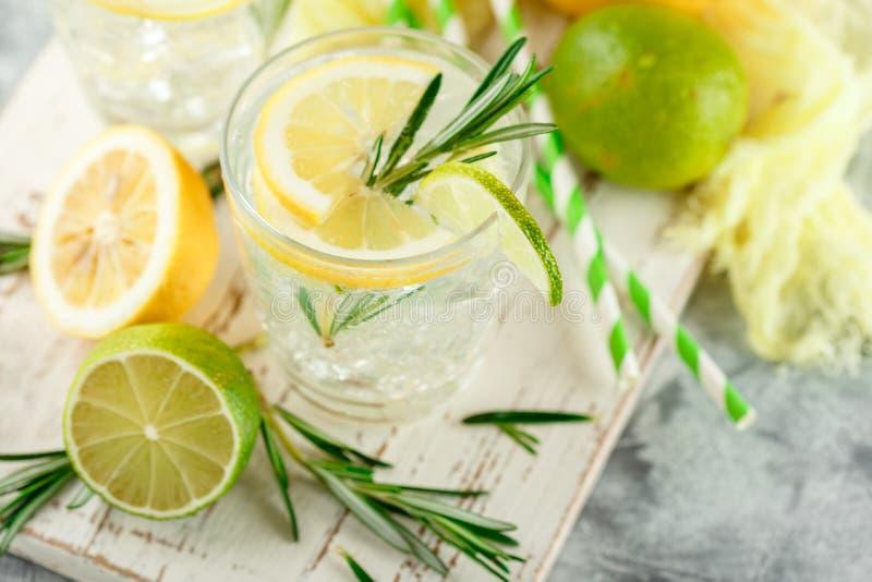 Chłodnicza alkoholiczka lub bezalkoholowy koktajl z cytryną fotografia royalty free