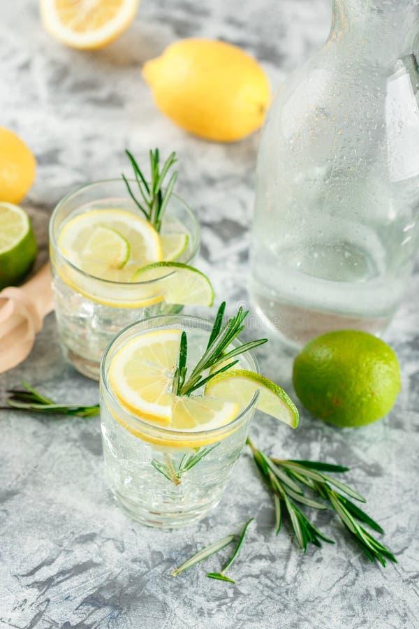 Chłodnicza alkoholiczka lub bezalkoholowy koktajl z cytryną zdjęcia royalty free
