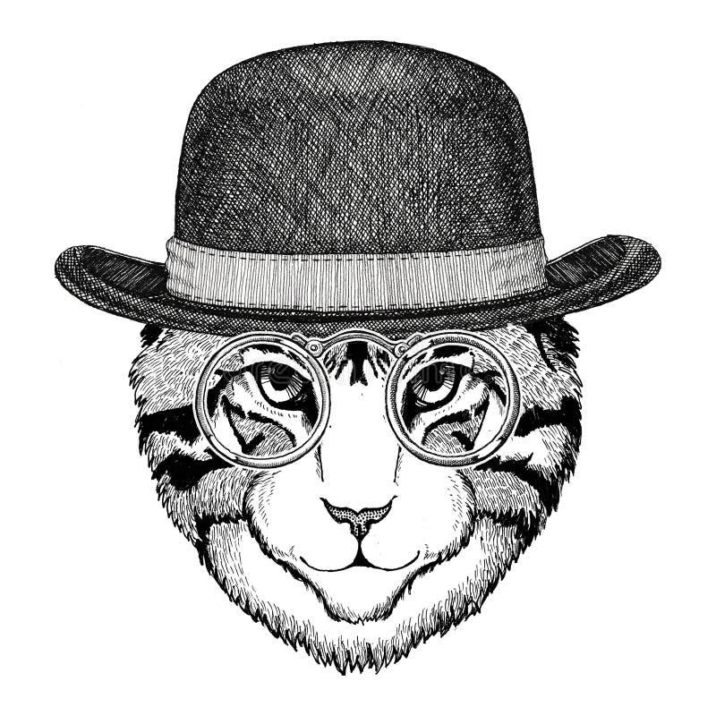 Chłodno dzikiego kota modnisia stylu Modnego zwierzęcego rocznika ilustracyjny wizerunek dla tatuażu, logo, emblemat, odznaka pro royalty ilustracja