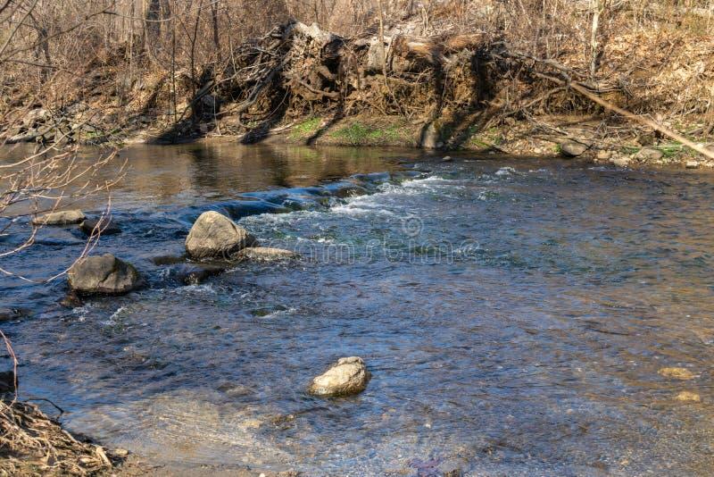 Chłodno jasny wodny bieg puszek mała rzeka w Nowy Jork Upstate zdjęcia royalty free
