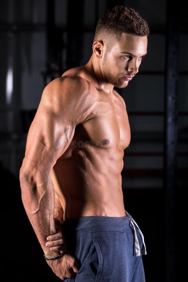Chłodno młody bodybuilder pozować obrazy royalty free
