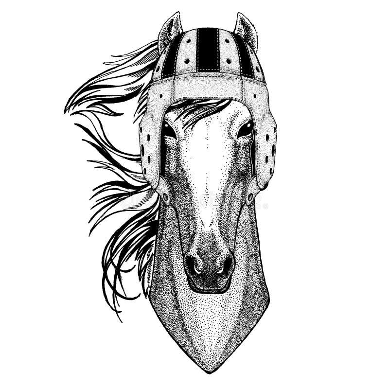 Chłodno zwierzęcy jest ubranym rugby hełma Krańcowego sporta gemowy koń, hossa, rycerz, rumak, courser ręka rysujący wizerunek dl royalty ilustracja