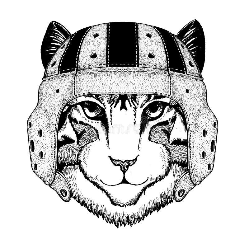 Chłodno zwierzęcy jest ubranym rugby hełma Krańcowego sporta gemowy wizerunek domowego kota ręka rysująca ilustracja dla tatuażu, ilustracji