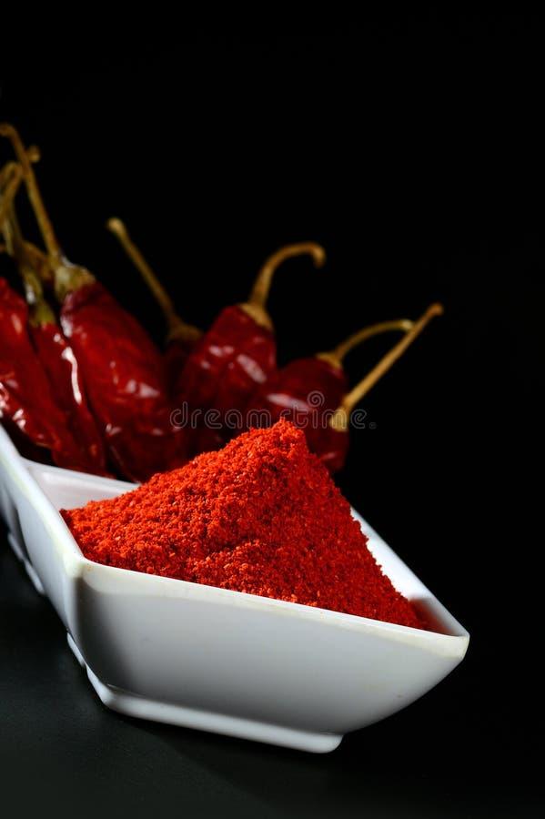 Chłodny proszek z czerwony chłodnym w bielu talerzu obrazy royalty free