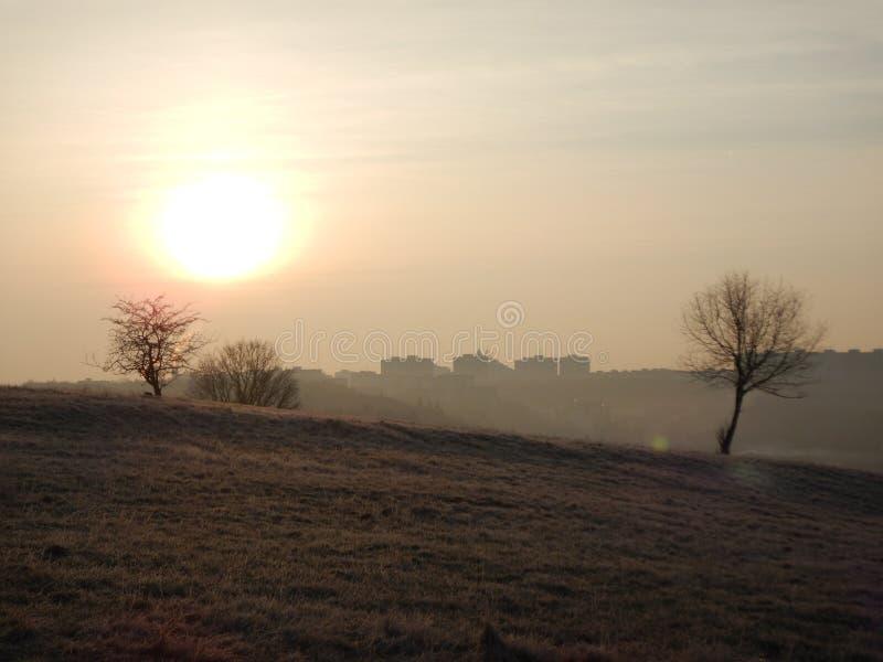 Chłodny ranek w jesieni naturze obrazy stock