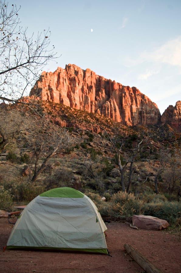 Chłodny Wczesny zima ranku widok w Zion parku narodowym, Utah, usa zdjęcia stock