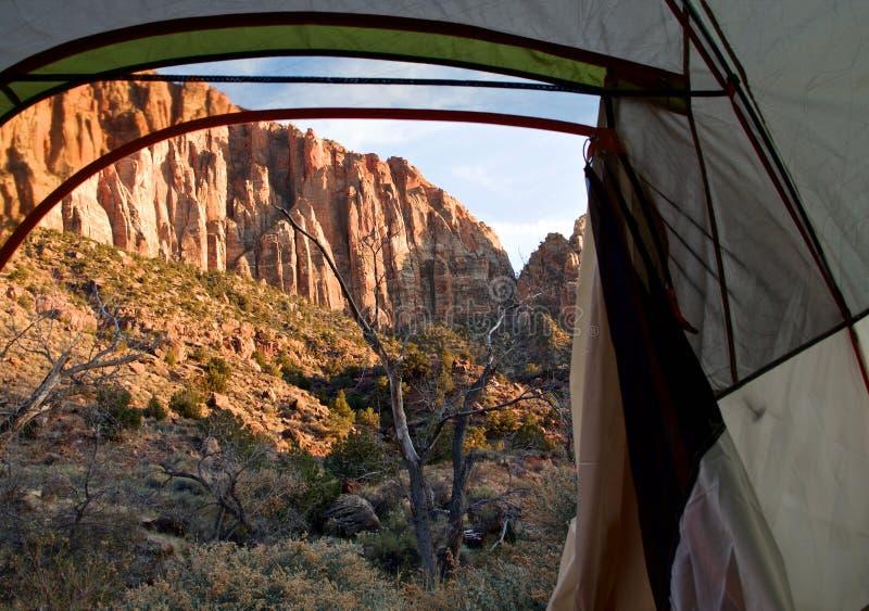 Chłodny Wczesny zima ranku widok w Zion parku narodowym, Utah, usa zdjęcia royalty free