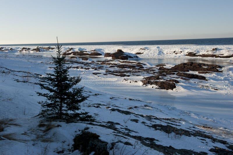 Chłodny zima krajobraz fotografia stock