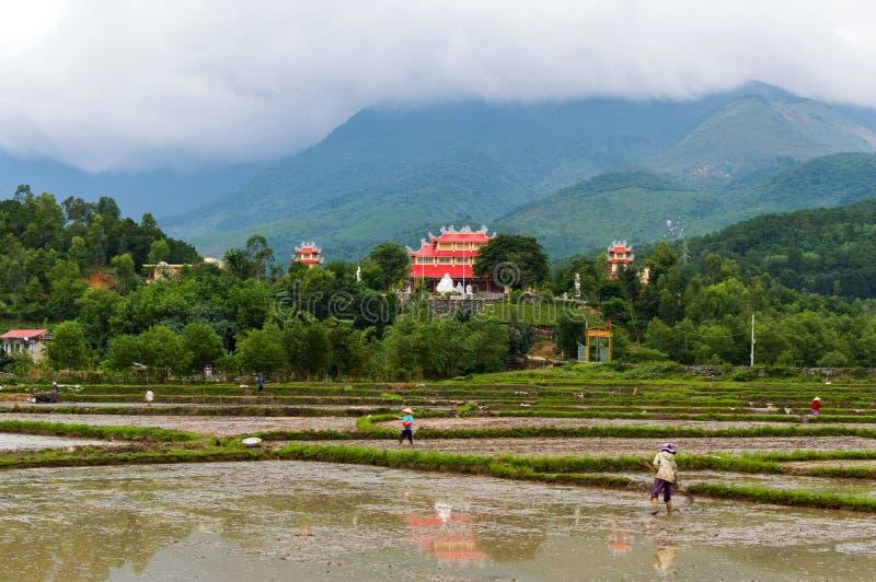 Chłopów rolnicy pracują w polach zalewających z wodą w pogórzach Rice śródpolny i azjatykci architektura budynek fotografia royalty free