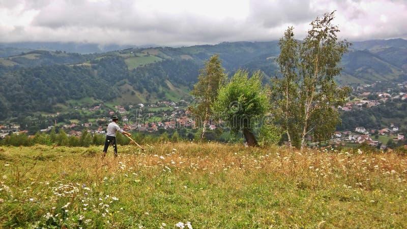 Chłop w Rumunia kośbie obrazy stock