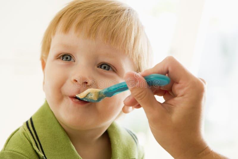 chłopcy karmienia młodych matki fotografia royalty free