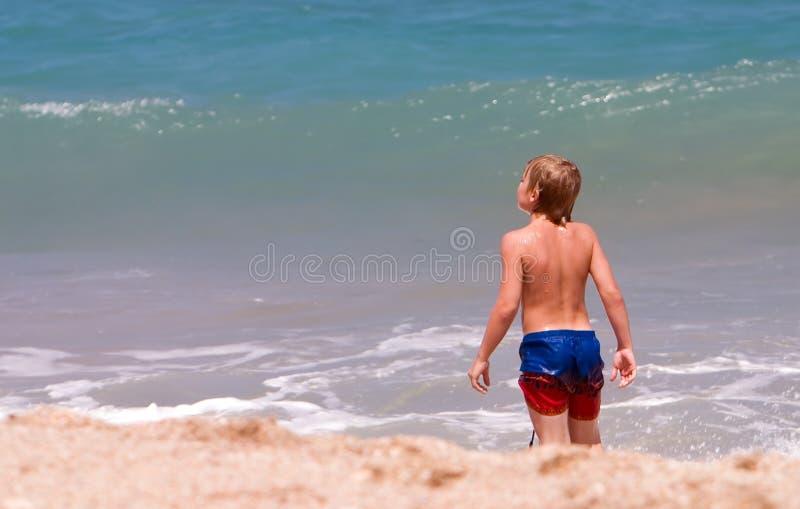 chłopcy na plaży badania zdjęcie stock