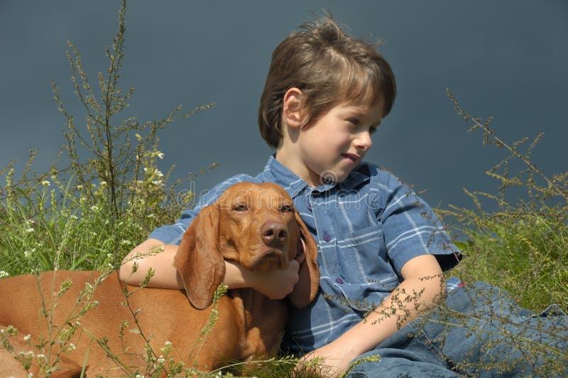 chłopcy psia łąki obrazy royalty free