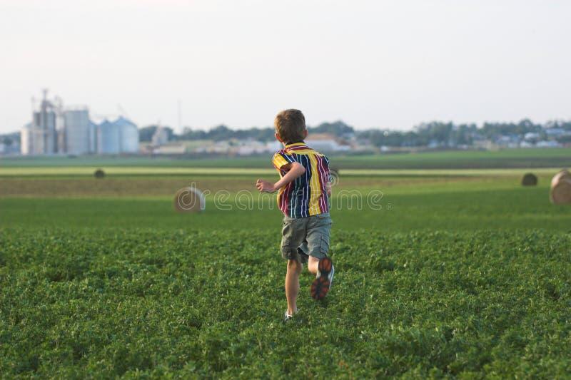 chłopcy rolnych biegnij pola obrazy stock