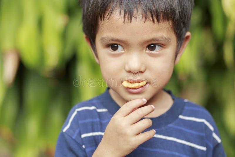 Chłopiec łasowania ryba chips zdjęcie royalty free