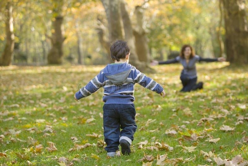 Chłopiec bawić się w parku zdjęcie royalty free