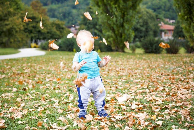 Chłopiec bawić się z liśćmi w jesieni zdjęcie royalty free