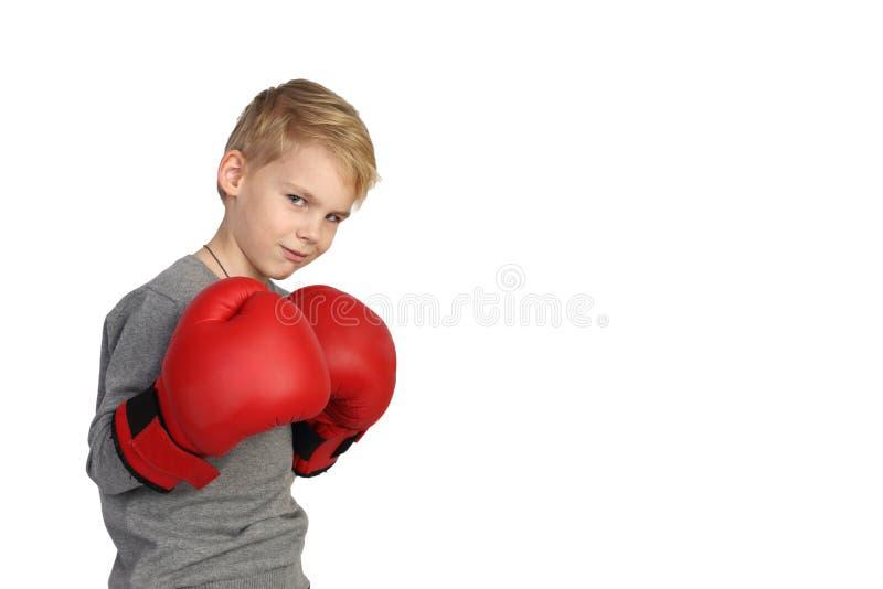 Chłopiec bokser zdjęcie royalty free