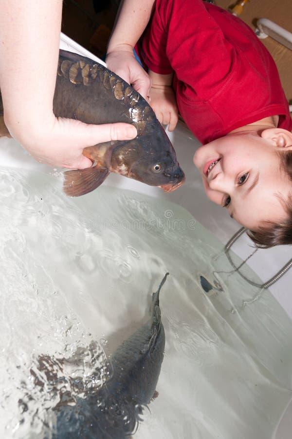 Chłopiec i boże narodzenia karpiowi fotografia stock