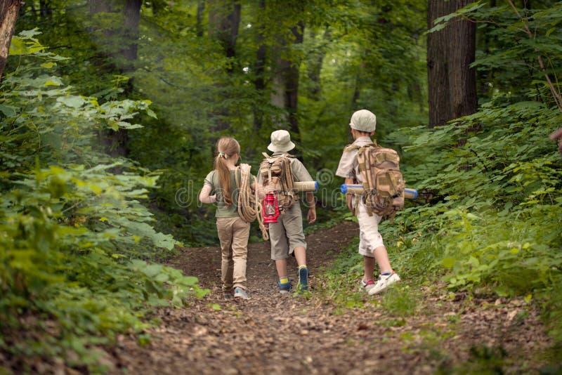 Chłopiec i dziewczyna na campingowej wycieczce w lasu badać obraz royalty free