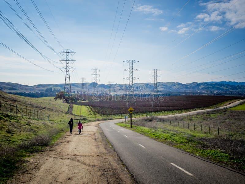 Chłopiec i dziewczyny odprowadzenie wzdłuż winnicy w Livermore, Kalifornia zdjęcie royalty free