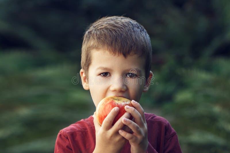 Chłopiec kąsek w świeży czerwony jabłczany plenerowego zdjęcie royalty free