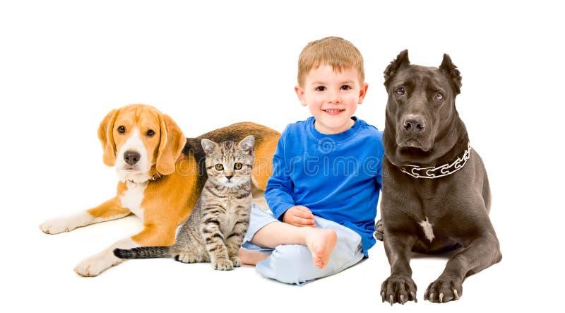 Chłopiec, kot i dwa psa, obrazy royalty free