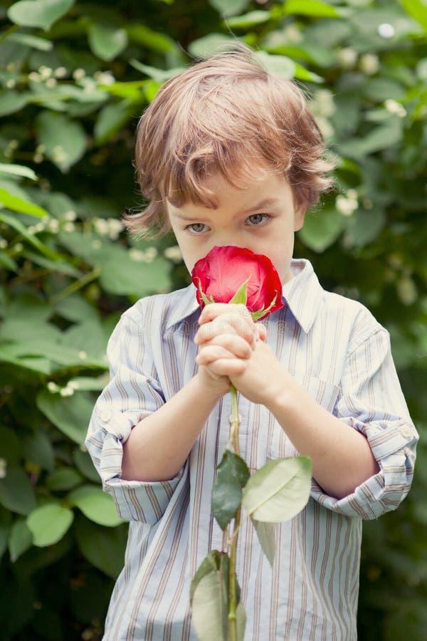 Download Chłopiec Mienie Wzrastał W Jej Ręce, Obraz Stock - Obraz złożonej z utrzymanie, dzień: 28968559