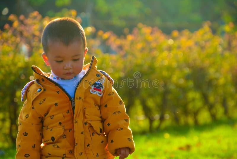 Chłopiec narastająca up w słońcu zdjęcie royalty free