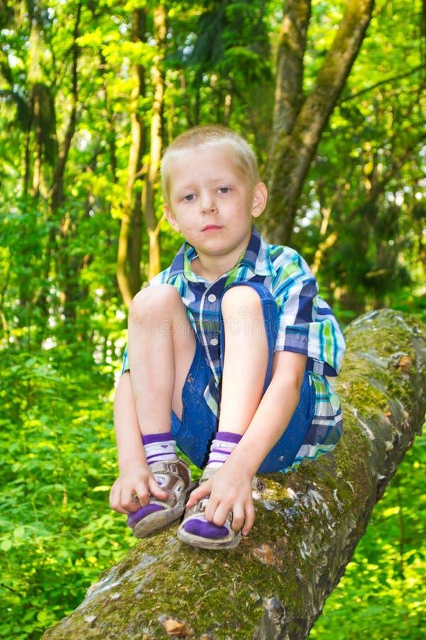 Chłopiec obsiadanie drzewem obraz stock