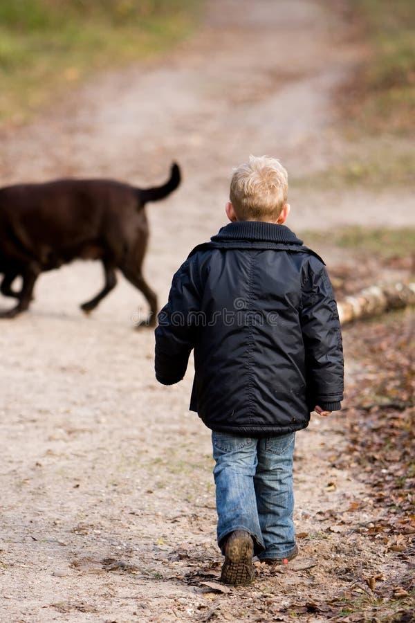 chłopiec odprowadzenie obrazy stock