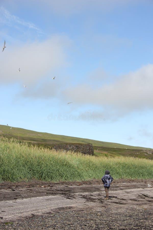 Chłopiec patrzeje rufy, Iceland zdjęcia stock