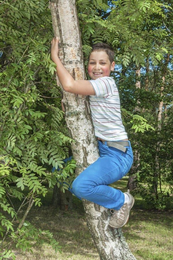 Chłopiec pięcie na drzewie obrazy stock