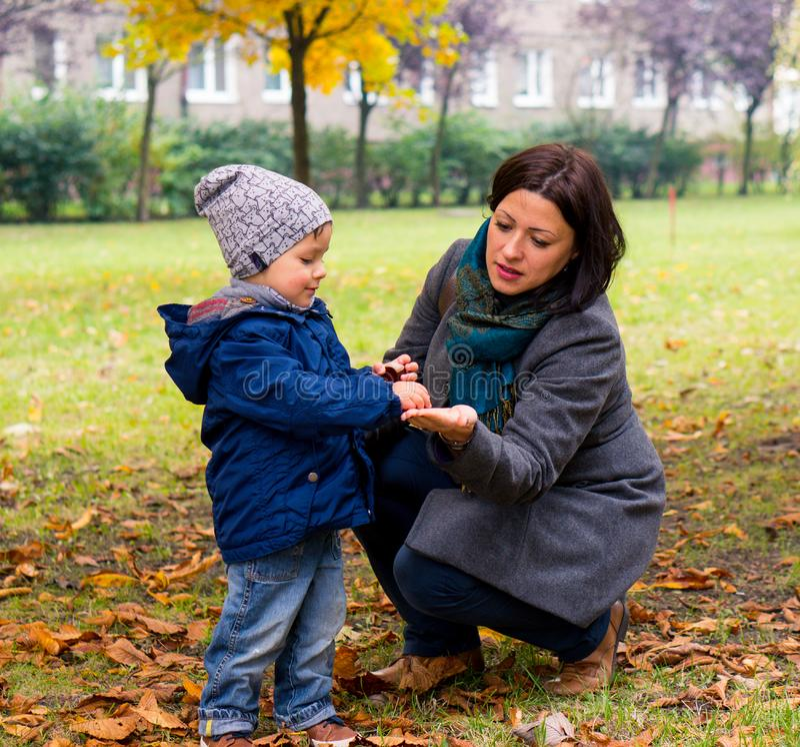 Chłopiec pokazuje kobieta kasztan obraz royalty free