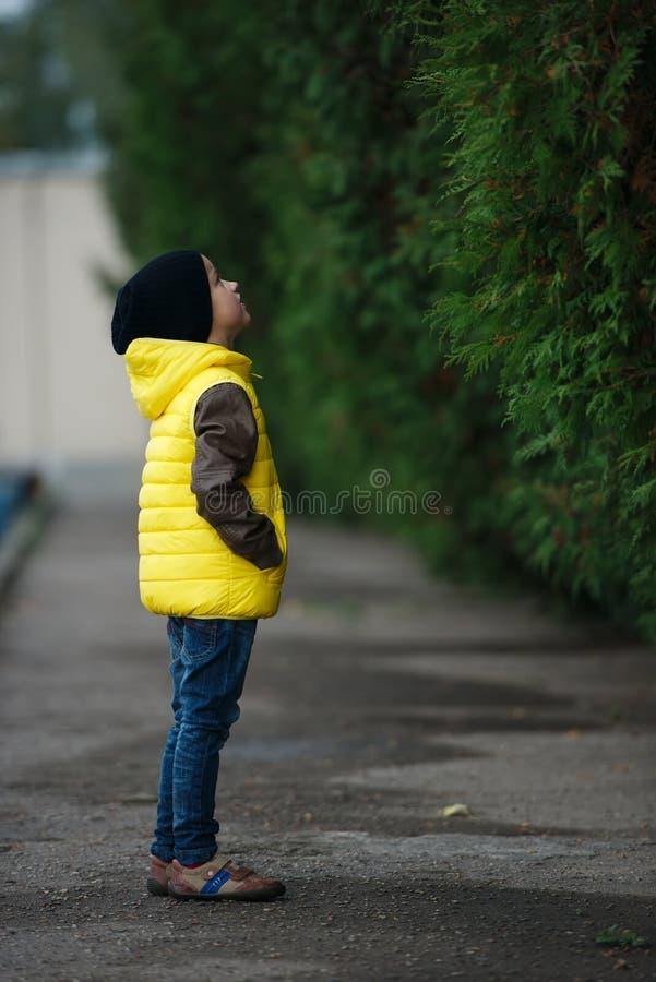 Download Chłopiec Portret śliczny Mały Obraz Stock - Obraz złożonej z ziemia, lifestyle: 57672449