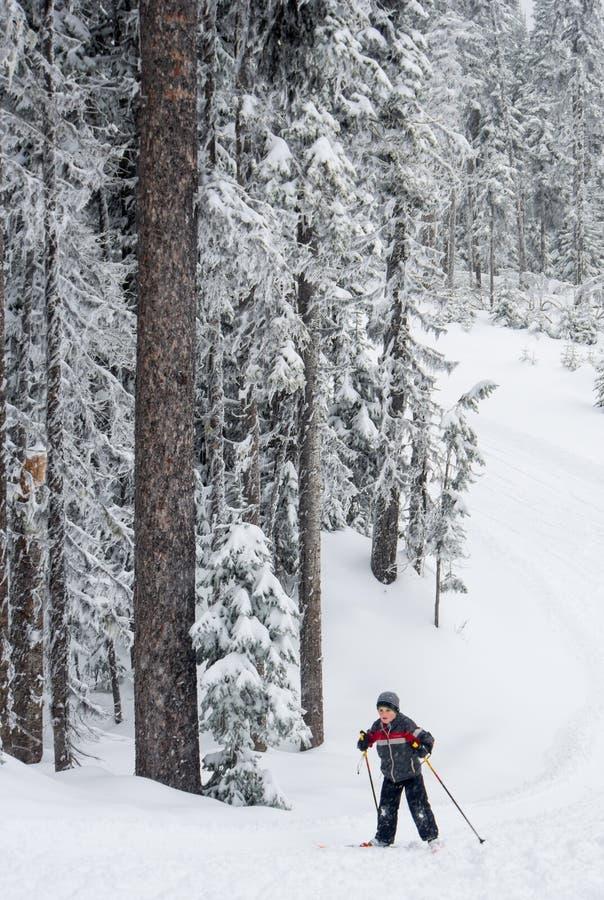 Chłopiec przecinającego kraju narciarstwo obraz royalty free