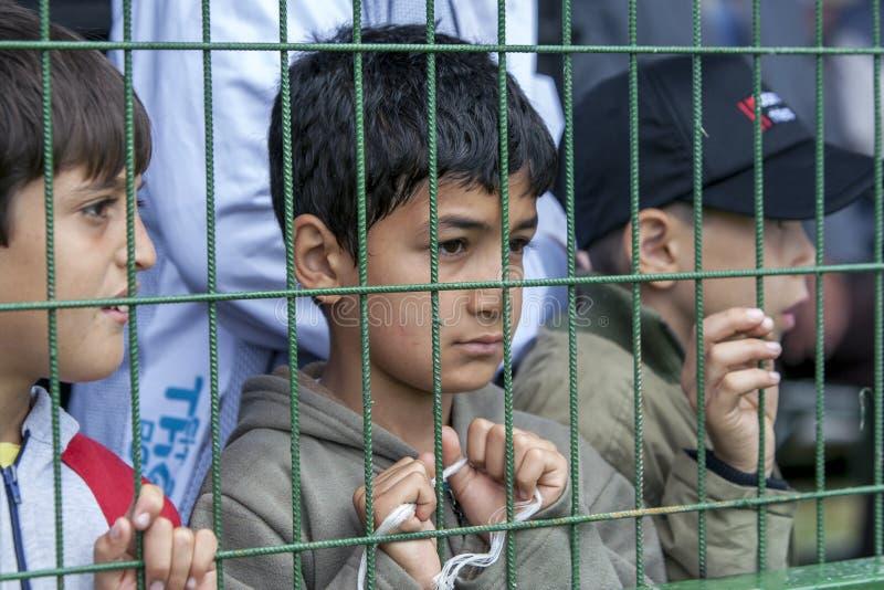 Chłopiec przy Kagithane turecczyzny oleju Zapaśniczym festiwalem w Istanbuł w Turcja obrazy stock