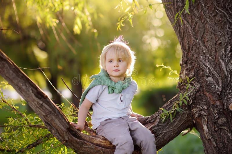 Chłopiec siedzi na gałąź drzewo i marzy Dziecko gry Aktywny rodzinny czas na naturze Wycieczkować z małymi dziećmi fotografia royalty free