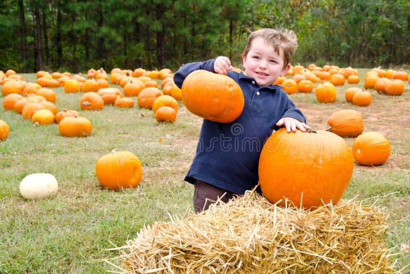 chłopiec szczęśliwi zrywania bani potomstwa zdjęcie stock