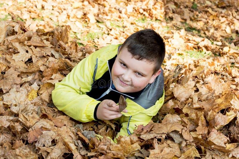 Chłopiec sztuki w jesieni suszą liście obraz royalty free