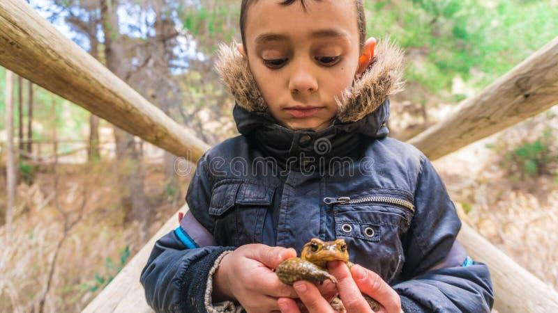 Chłopiec trzyma kumaka na drewnianym moscie zdjęcia stock