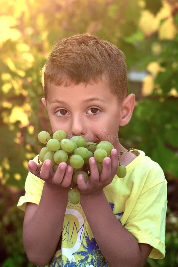 Chłopiec trzyma winogrona fotografia stock