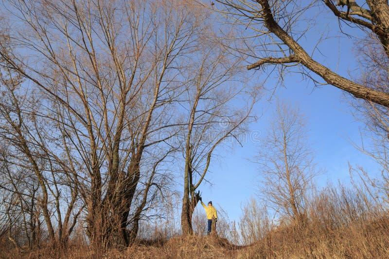 Chłopiec w żółtej kurtce bawić się outdoors w opóźnionej jesieni fotografia stock