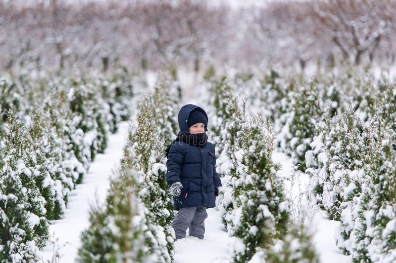 Chłopiec w ciepłym snowsuit odprowadzeniu w zima parku z białym śniegiem zdjęcie stock