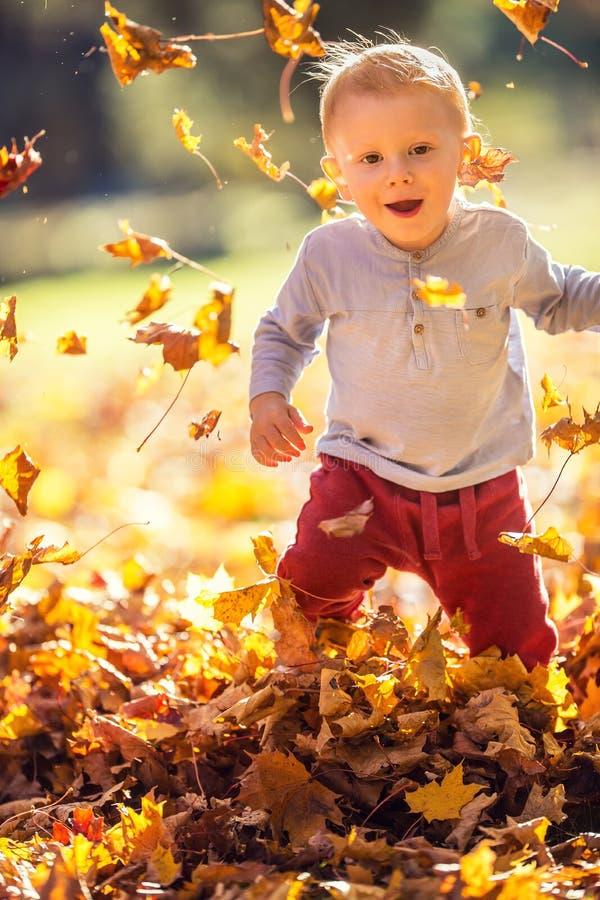 Chłopiec w jesieni parkowy bawić się z liśćmi obrazy stock