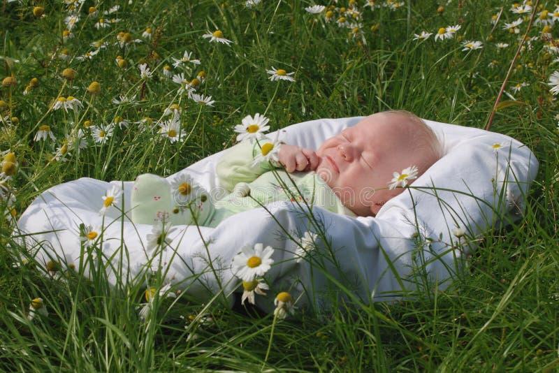 Chłopiec w kołysce (1 miesiąc) zdjęcie stock
