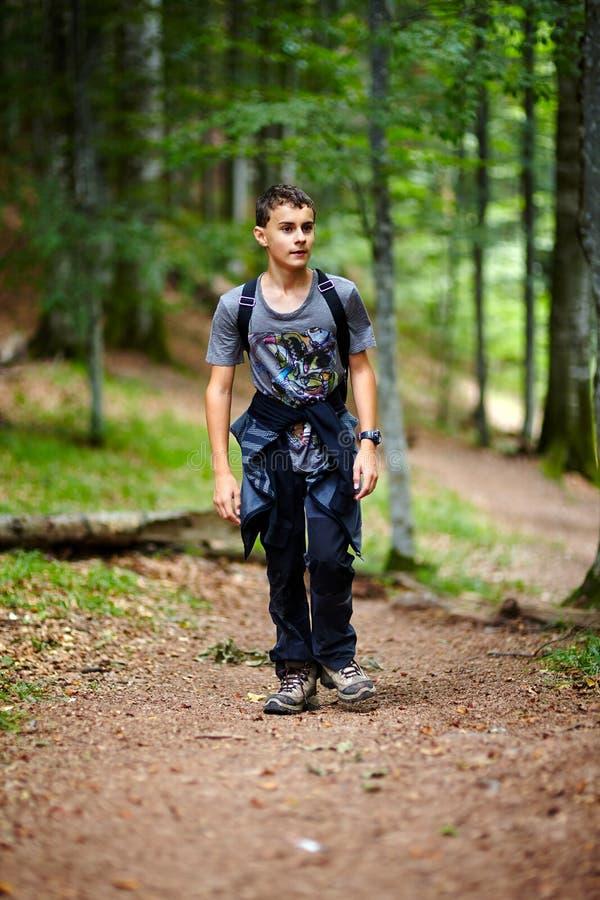 Chłopiec wycieczkuje w halnym lesie fotografia stock
