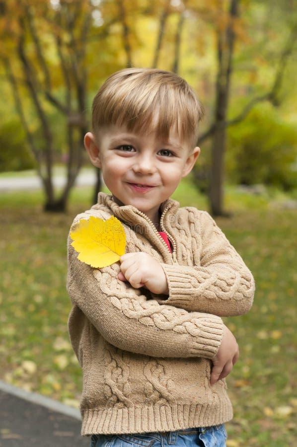 Chłopiec z żółtym liściem drzewo obraz royalty free