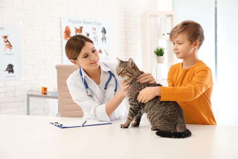 Chłopiec z jego kotem odwiedza weterynarza obraz stock