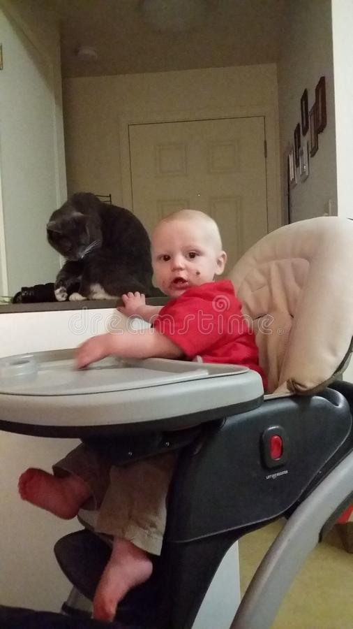 Chłopiec z kotem obraz royalty free